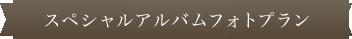 スペシャルアルバムフォトプラン